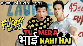 Tu mera bhai nhi hai lyrics