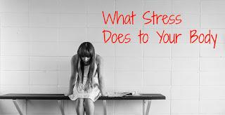 Pengaruh Stres Terhadap Sistem tubuh
