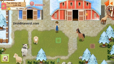 Animals - Harvest Moon: Light of Hope Guide