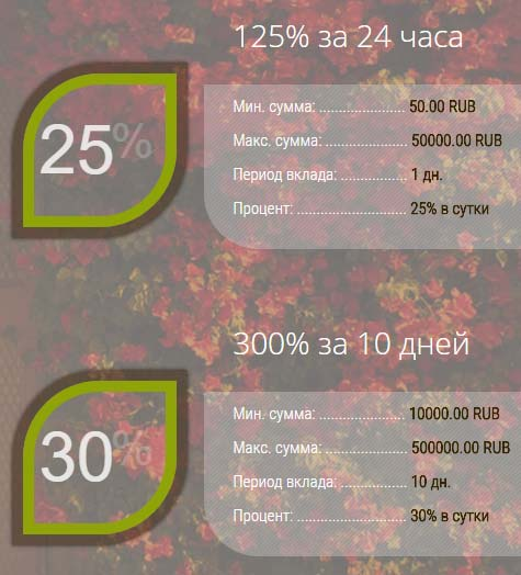 Инвестиционные планы Azalea