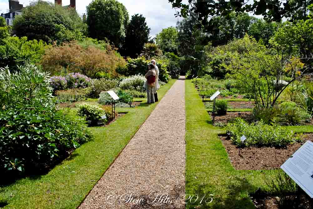 This First Shot Is A Single Picture Of Chelsea Physic Gardens, Located In  Chelsea, Right In Downtown London Beside The Thames. Established In 1673,  Itu0027s A ...