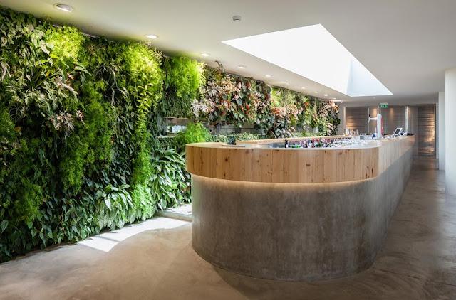 indoor vertical garden in restaurant