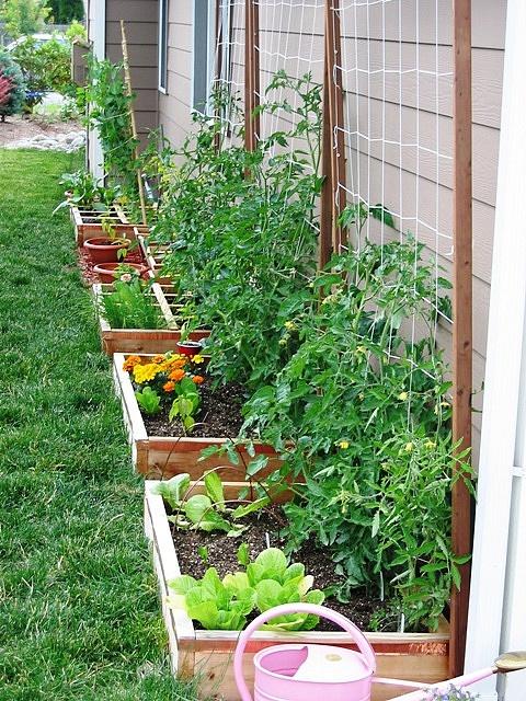 Il giardino del brocante orto in terrazza giardino for Giardino in terrazza