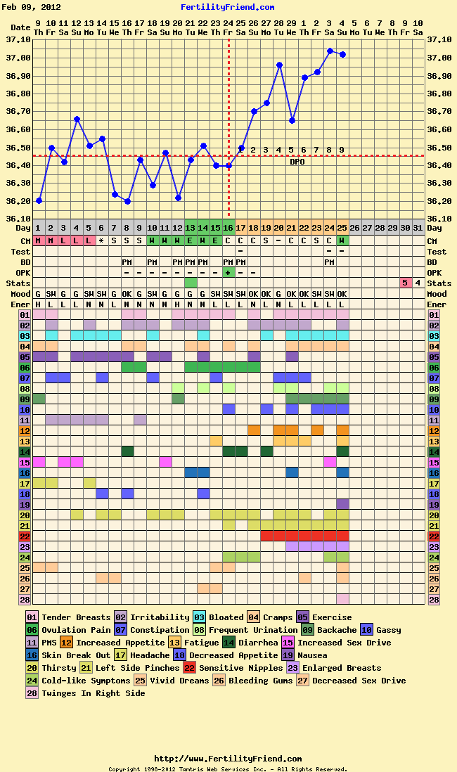 My Journey of Mishaps & Miracles: 9 DPO today