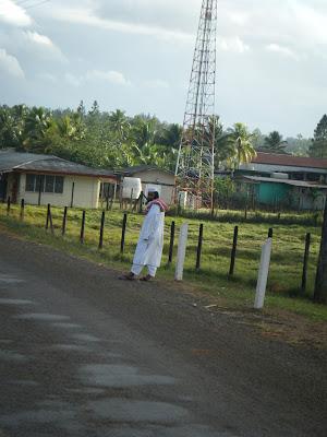 Savusavu islander