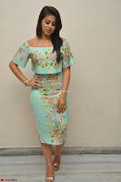 Nikki Galrani in Cute Dress Dress At Marakathamani Success Meet ~  Exclusive 025.JPG