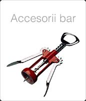 Accesorii Bar Profesionale