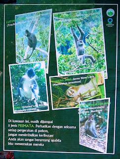 Perbedaan jenis hewan bisa dilihat pada papan informasi di hutan
