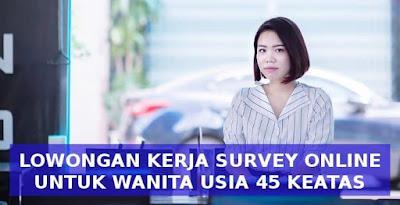 loker-usia-45-keatas-online-survey-toluna-indonesia