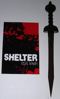 Portada del libro Shelter, de Steve Wands