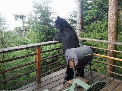 Grillen auf der Terrasse - Bär lustig