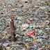 A boy walks on a pile of garbage covering a drain in New Delhi