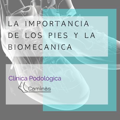 Artículos Podología - Clínica Podológica Caminàs
