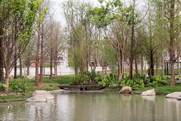 台中南屯兼六園,惠宇建設綠美化秘境,落羽松森林、小橋流水