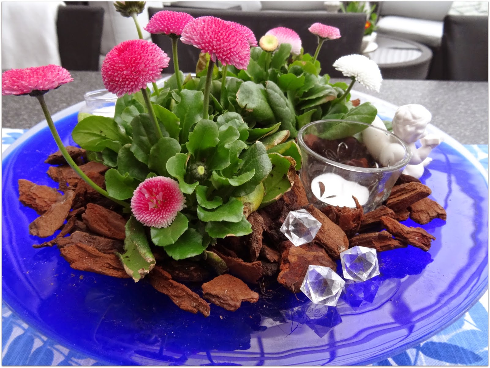 Livets goda: med våren kommer solen och blommorna