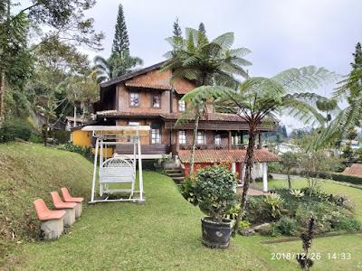 halaman villa kelapa