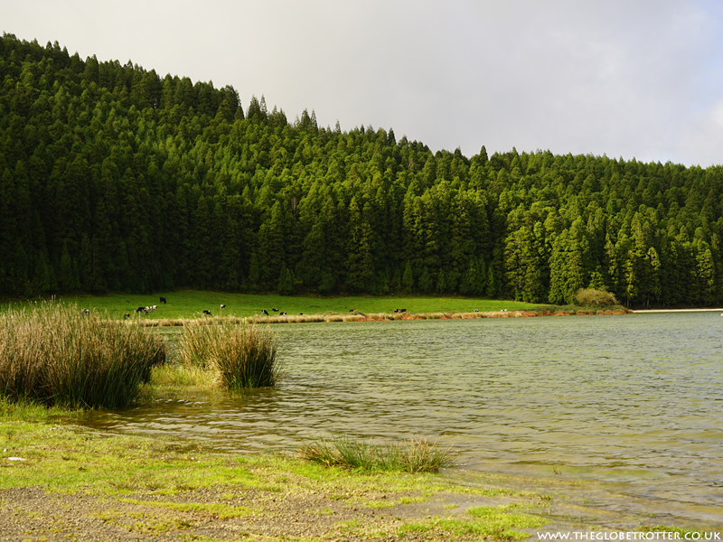 Lagoa de São Brás in Azores