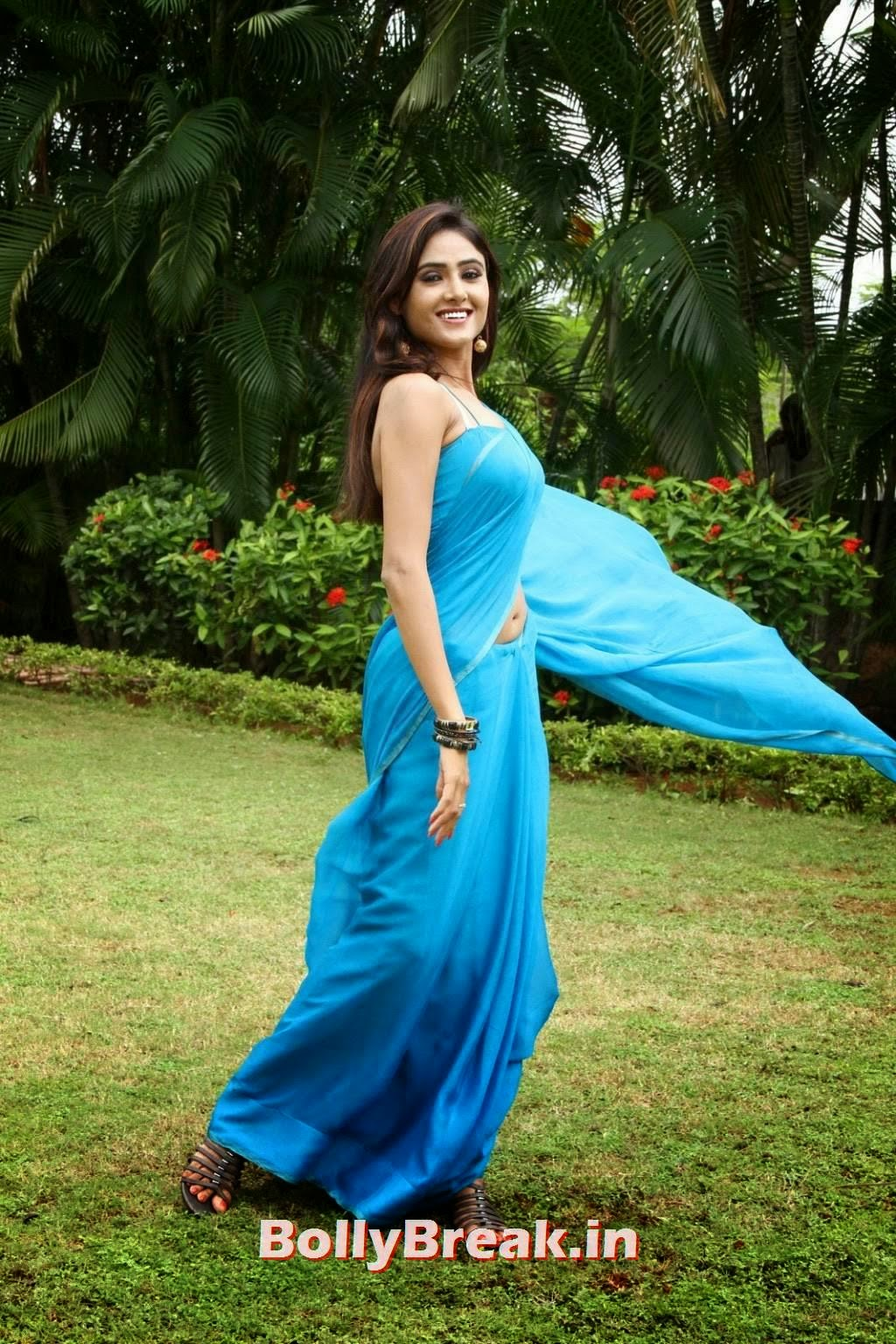 , Tamil Actresss Hot Hd New Navel Pics in Saree - Sony Charishta