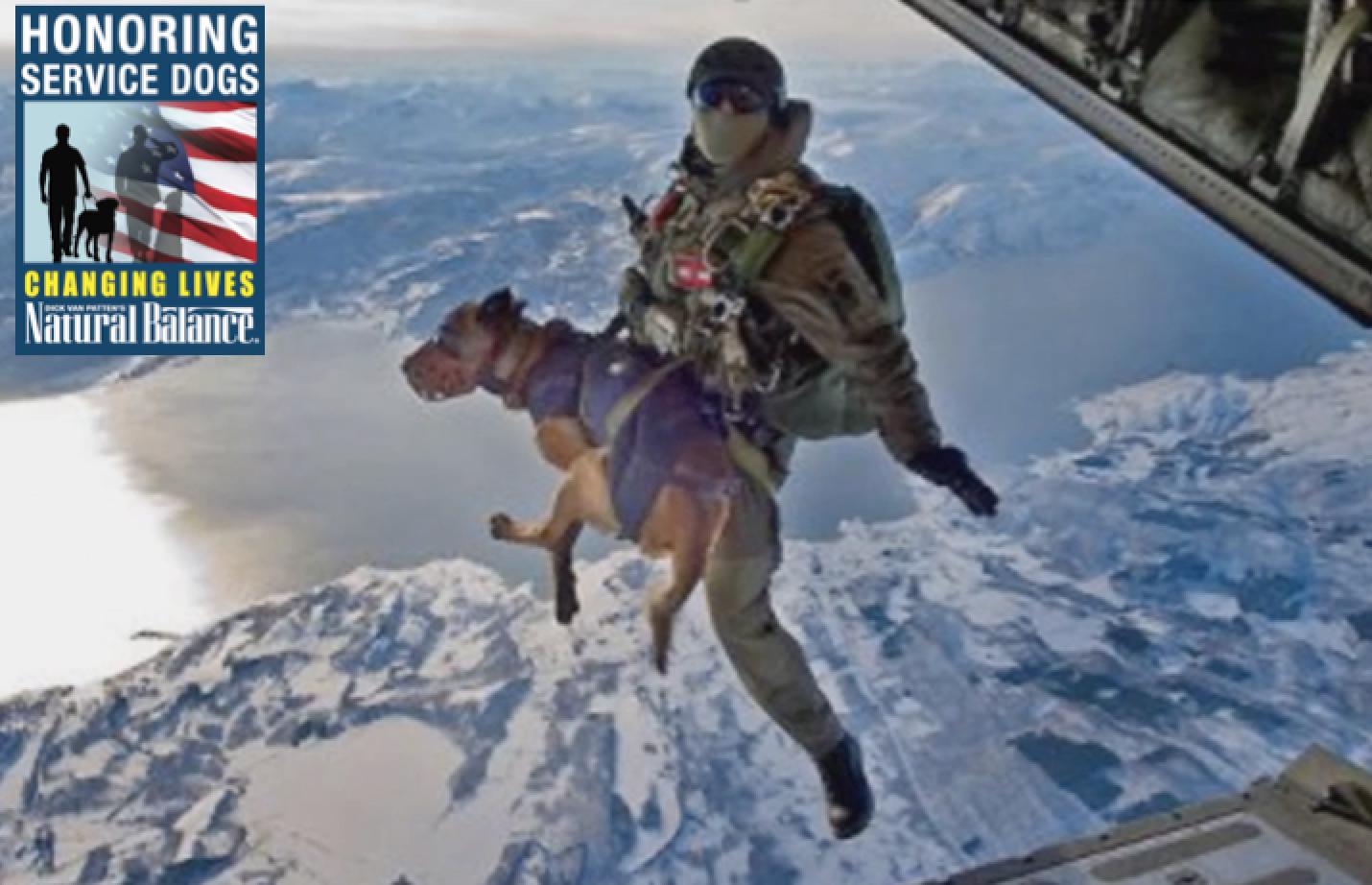Cole Reinhardt Tandedem Skydive at Skydive Elsinore - YouTube