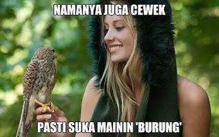 meme gambar burung lucu 10