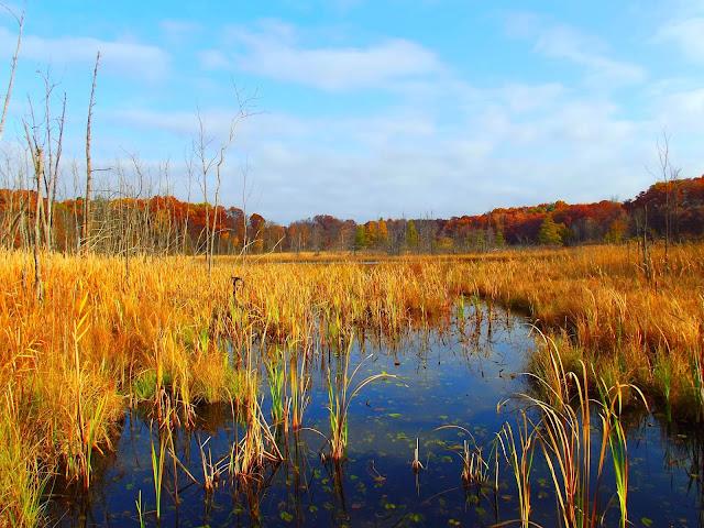 Lake Lonidaw - Potawatami Nature Preserve