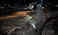 Στους 96 οι νεκροί από την πυρκαγιά στην Ανατολική Αττική