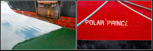 Polar Prince; CCGS Sir Humphrey Gilbert; Lunenburg; Nova Scotia; Ice Breaker; Boat; Ship