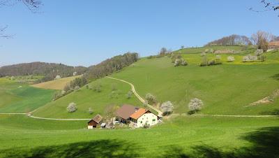 Sicht zum Brunnenhof