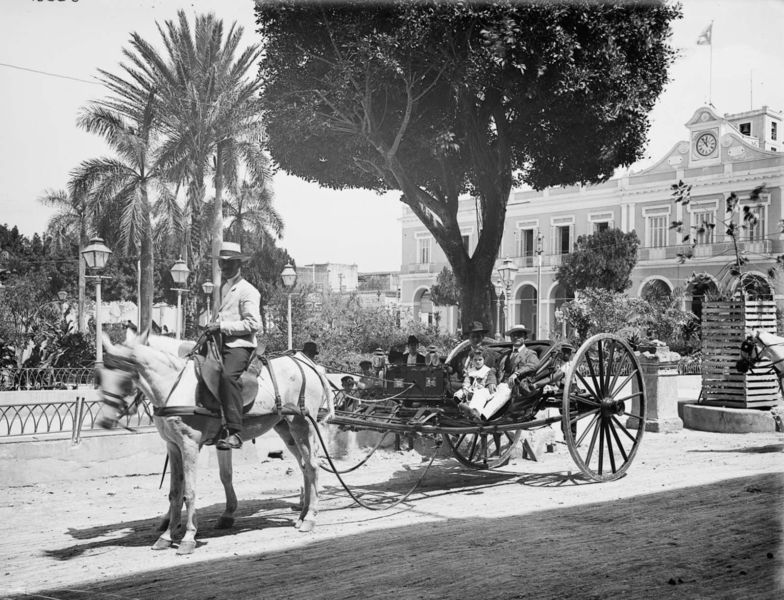 A horse-drawn cab. 1904.