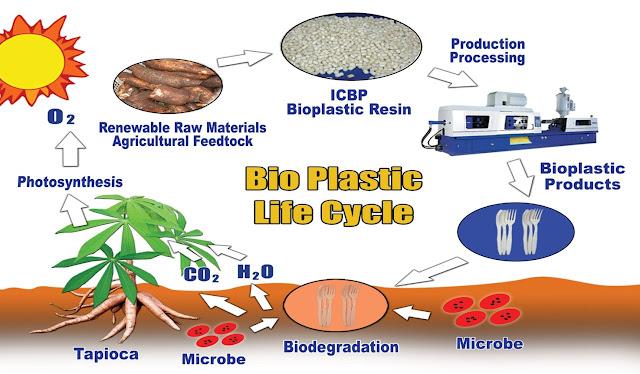 How Bio Plastic are Made