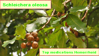 Top medications Hemorrhoid