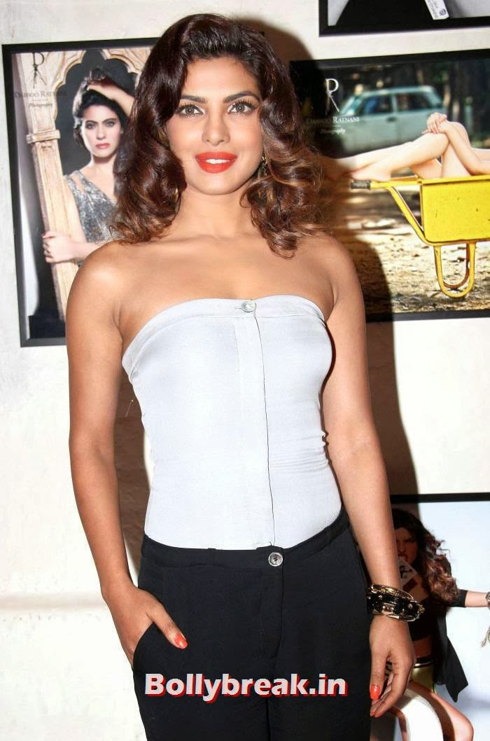 Priyanka Chopra, Dabboo Ratnani's 2014 Calendar Launch Pics
