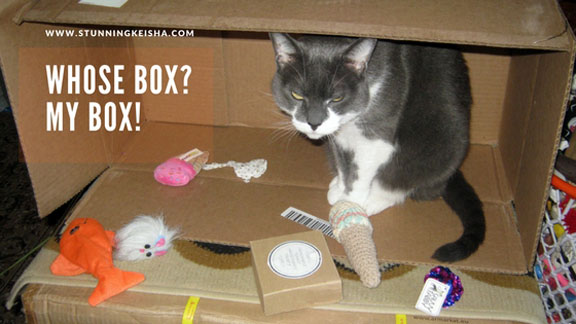 Wordless—CK Style. Whose Box? My Box!