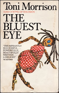The illustration of family life in the book the bluest eye