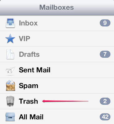 how to delete email trash on ipad