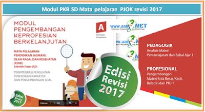 Modul PKB SD PJOK revisi 2017 aan88.NET