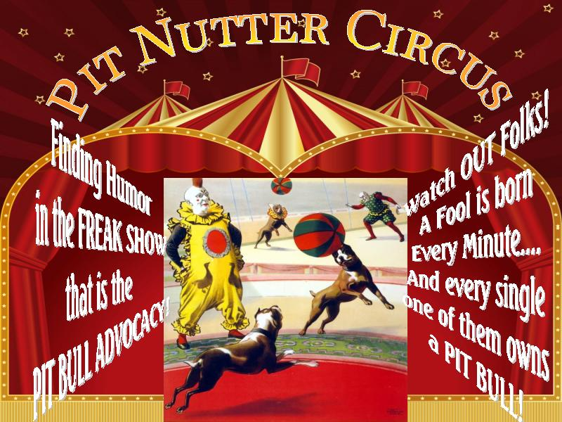 Pit Nutter Circus
