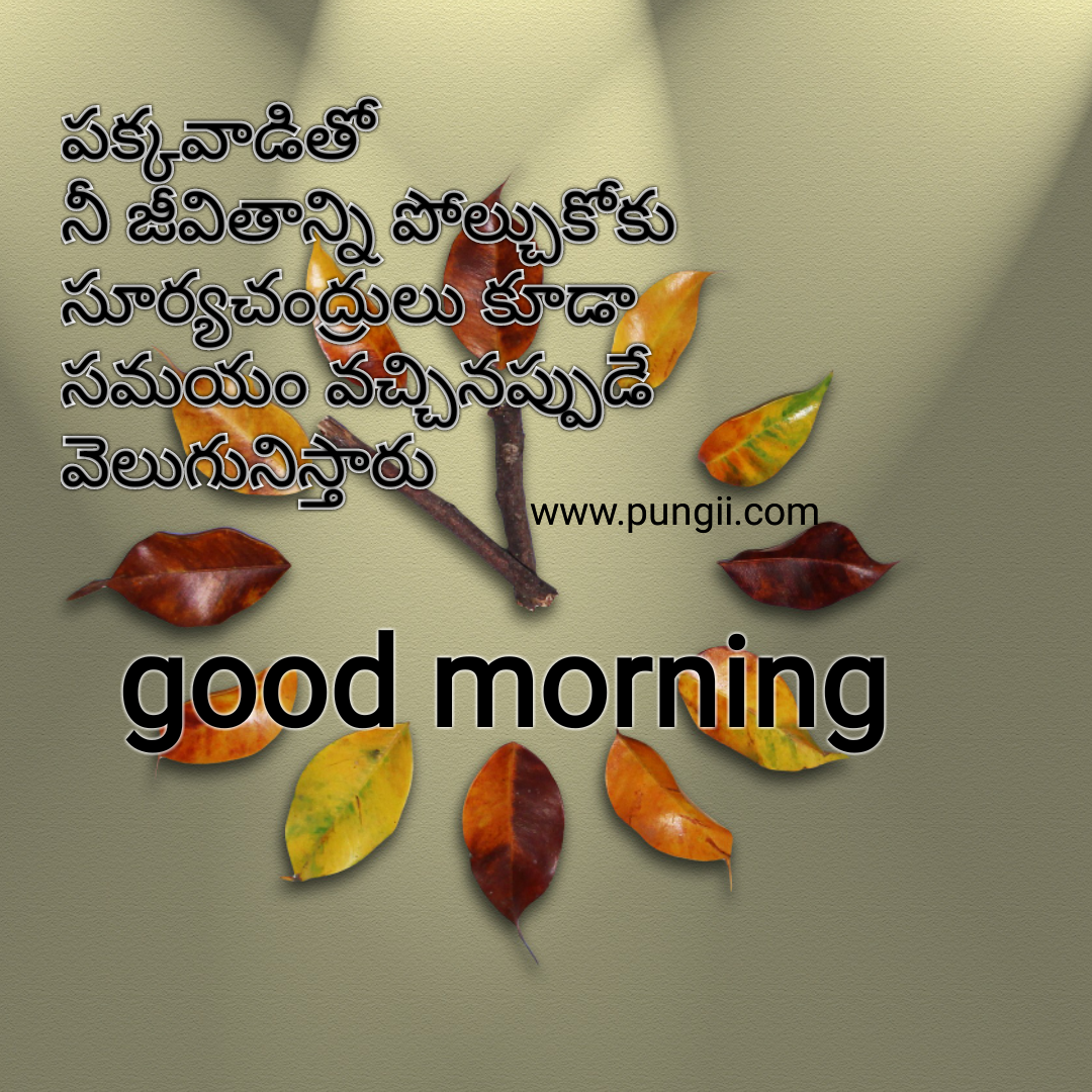 Good Morning Inspirational Quotes Latest Telugu Inspirational Quotes With Good Morning Images  Pungii