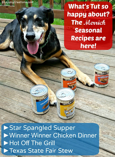 Teutul knows what makes the dog days of summer better - #Merrick Summer Seasonal Recipes! #dogfood #MadeinUSA #BestDogEver #seniordog #rescuedog ©LapdogCreations