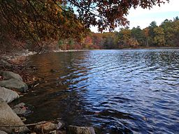 http://commons.wikimedia.org/wiki/File%3AWalden_Pond_shoreline_in_fall_(Massachusetts).jpgFile URL: http://upload.wikimedia.org/wikipedia/commons/7/7c/Walden_Pond_shoreline_in_fall_%28Massachusetts%29.jpgAttribution: By Andrew Douglass (Own work) [CC-BY-SA-3.0 (http://creativecommons.org/licenses/by-sa/3.0)], via Wikimedia CommonsHTML