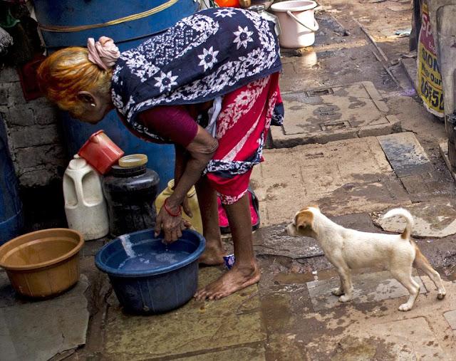 puppy, old lady, kumbharwada, dharavi, mumbai, india, street, street photography, streetphoto,