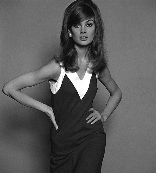 Oh So Lovely Vintage Sixties Style Icon Jean Shrimpton