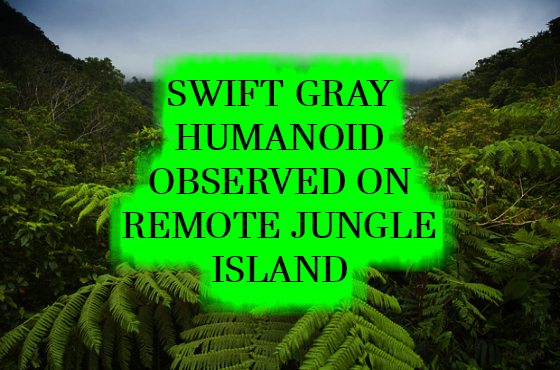 Swift Gray Humanoid Observed on Remote Jungle Island