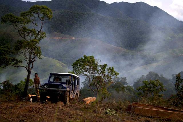 Rusak Sudah Hutan Aceh Seluas 290 Ribu Hektare