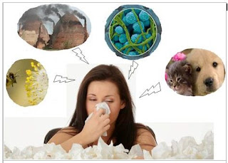 Phòng tránh bệnh viêm mũi dị ứng