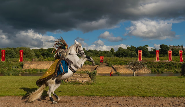 grey horse at Kynren