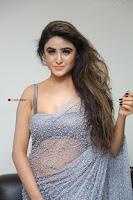 Sony Charishta in Saree Deep neck Choli ~  Exclusive 19.JPG