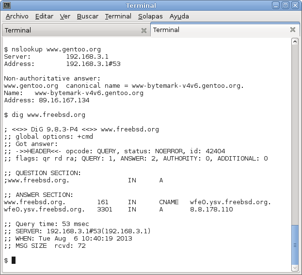 El poder de 01100011 unix freebsd dhcp server dnsmasq for Consul dns server