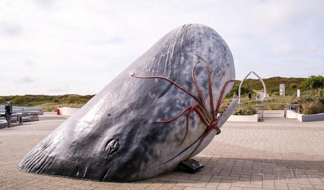 Walplastik Ecomare auf Texel