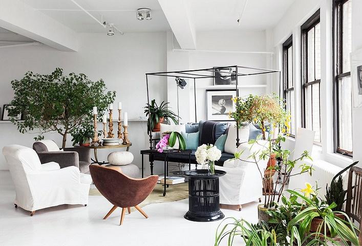 Mix and chic vincent wolf 39 s beautiful nyc loft - Plantas para salon ...